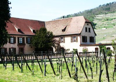 Alsace 10